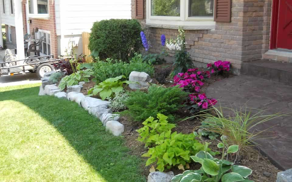 Front Yard Plant bed