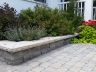 Elevated plant bed and paver walkway